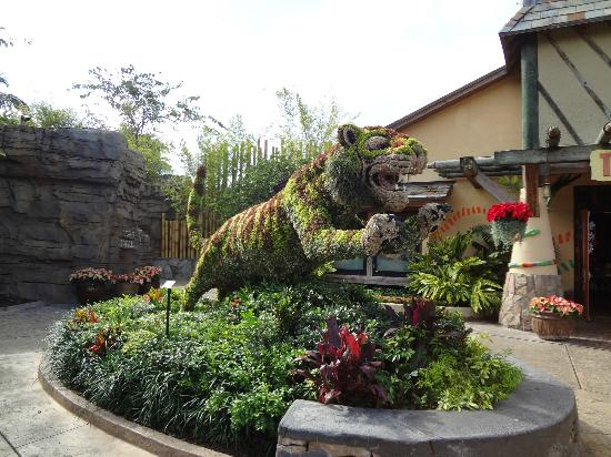Rides Picture Of Busch Gardens Tampa Tampa Tripadvisor