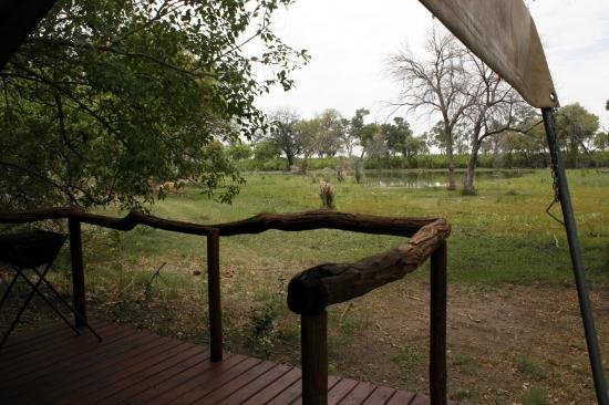 Khwai Tented Camp: View of lagoon from Tent #2