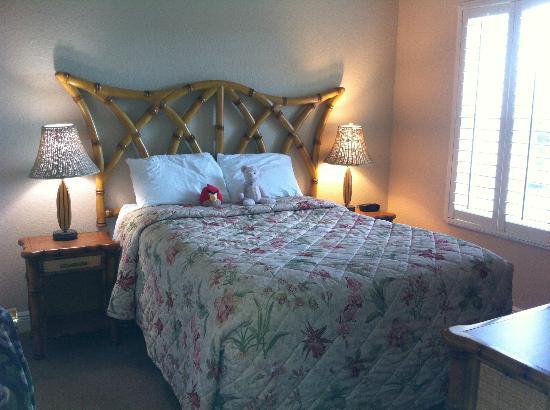 富豪棕櫚度假村溫泉酒店照片