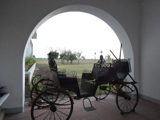 Hotel Jhira Bagh Palace: View from the porch with the ancient buggy
