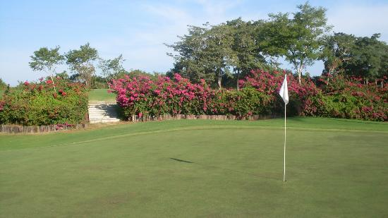 Club de Golf Los Flamingos: Nice flowers throughout