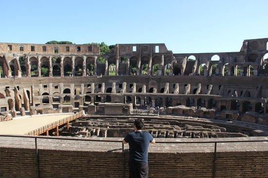 Coliseo: interior colosseum