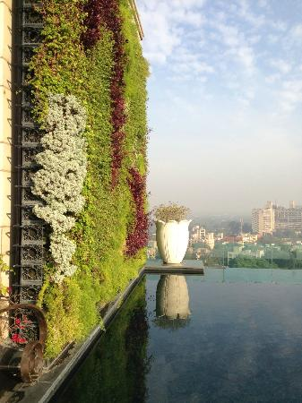 The Leela Palace New Delhi: Living Wall-pool area