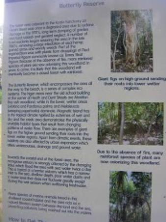 Bungalow Bay Koala Village: Information Board