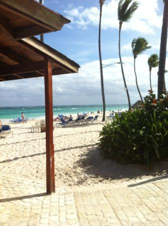 Bavaro Princess All Suites Resort, Spa & Casino: beautiful!!