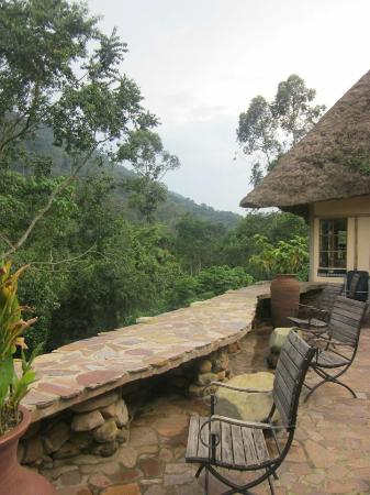 Bwindi Lodge: View from near the restaurant