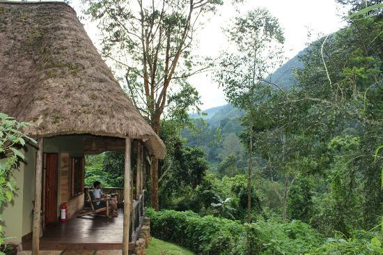Bwindi Lodge: Bungalow