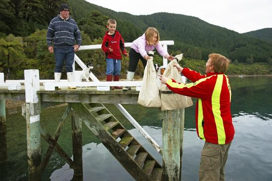 Pelorus Mail Boat: Delivering the mail and home schooling books