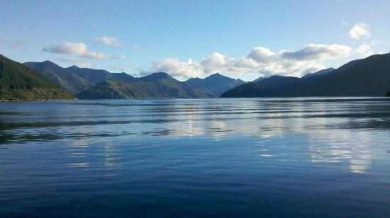 Pelorus Mail Boat: Beautiful Pelorus Sound, Marlborough Sounds