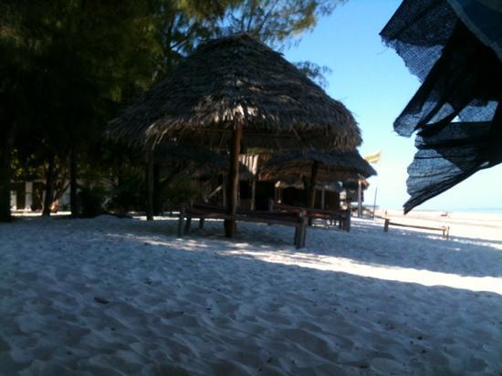 Makuti Beach Hotel : paridise