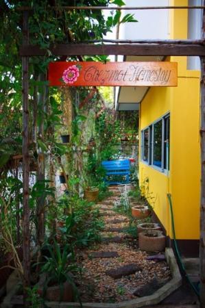 Chezmoi Homestay: garden