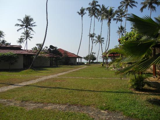 Weligama Bay Resort: Path to the pool, beach and terrace