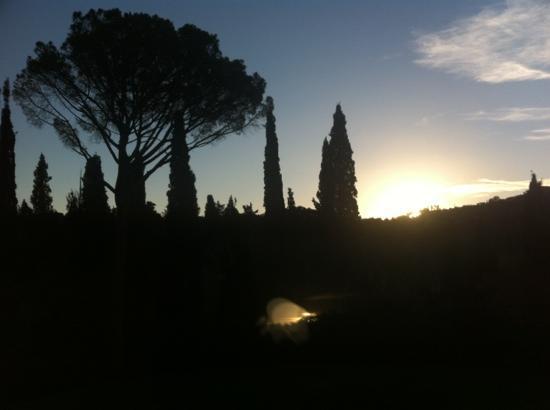 Al Giardino degli Etruschi: Alba