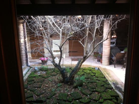 Al Giardino degli Etruschi: il melograno