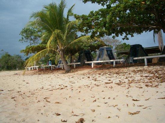 Seisia Holiday Park:                                     Camp Site - On The Beach