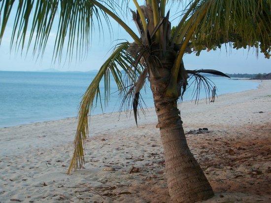 Seisia Holiday Park:                                     Lovely Beach