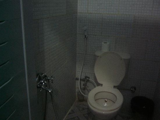 Cairo Palace: トイレにはペーパーが流せません。横にあるゴミ箱に捨てます。