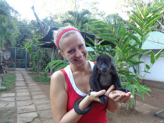 The Congo Trail Canopy Tour: Baby Lolo was adorable