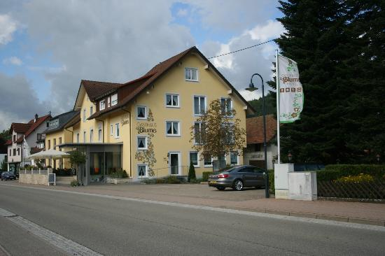 Hausach, Germany: Hotel and acr park