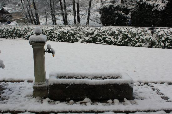 Le Schaeferhof : Let it snow, let it snow, let it snow