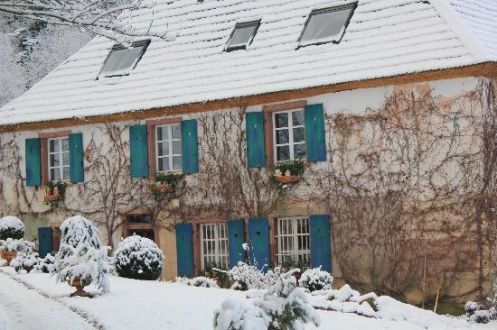 Le Schaeferhof : Maison de Charme