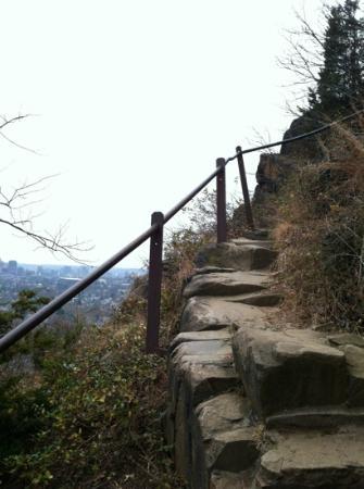 East Rock Park: Giant Steps Trail