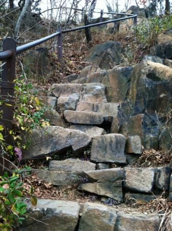 East Rock Park: Giant Steps Trail