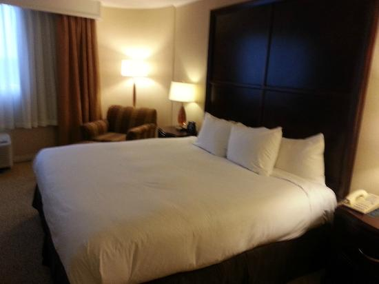 Hilton Chicago/Oak Lawn: King Bed