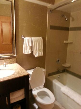 Hilton Chicago/Oak Lawn: Bathroom