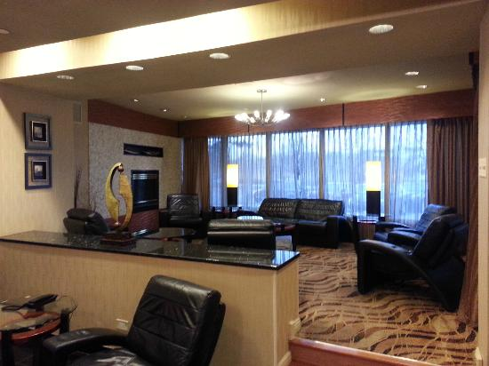 Hilton Chicago/Oak Lawn: Lobby