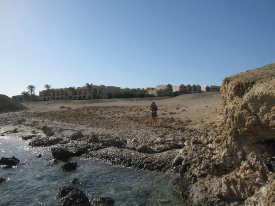 TUI MAGIC LIFE Kalawy : Strandumgebung