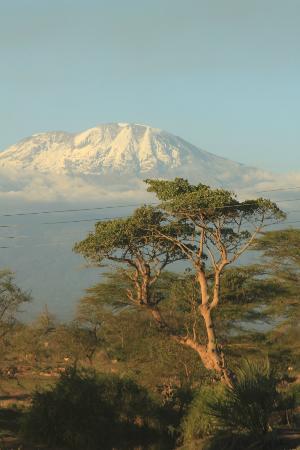Mount Kibo: Kili