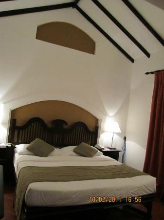 Cinnamon Lodge Habarana : The Room