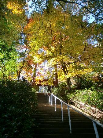 Prefettura di Tokyo, Giappone: 高源寺入り口