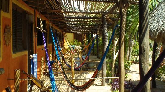 Posada Mexico: Zipolite