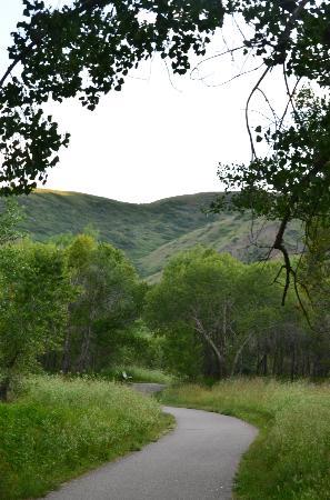 Helen Schuler Nature Centre: A walking trail.