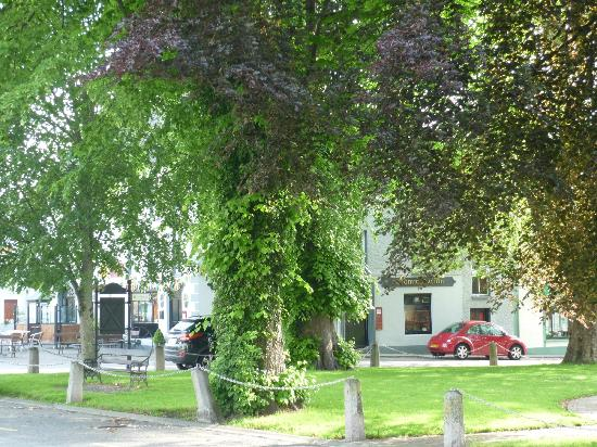 Woodstock Arms Bed & Breakfast: The village green in the centre of Inistioge