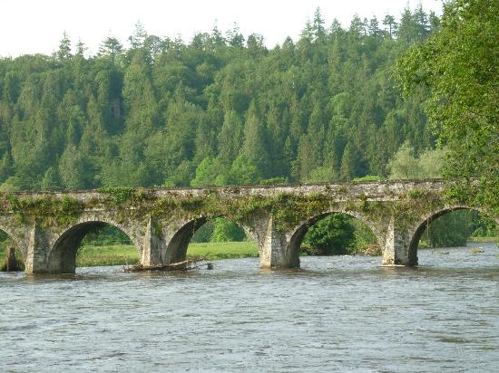 Woodstock Arms Bed & Breakfast: The famous bridge over the river Nore