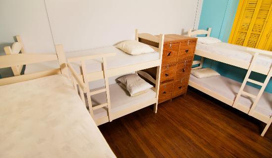 Terra Brasilis Hostel: Dorm