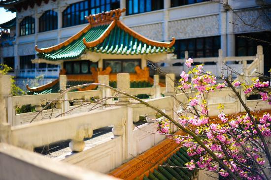 Huatian Chinagora Hotel : Jardin traditionnel interrieur