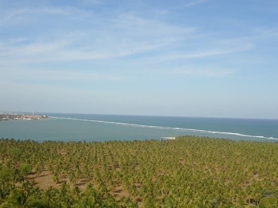 Gunga Beach: Vista da praia do gunga