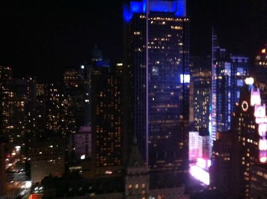 Hilton Times Square: Spectacular view