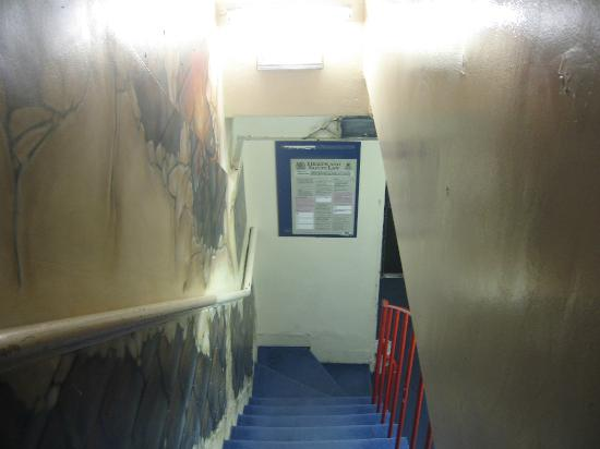 Central Hostel : Stairs of the hostel