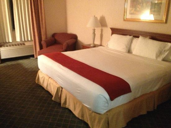 Holiday Inn Express & Suites Ex I-71/ Oh. State Fair/Expo Center: King Bed