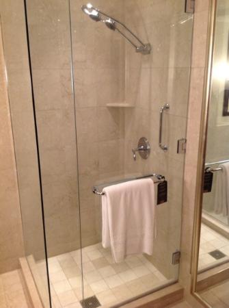 Conrad Indianapolis: shower
