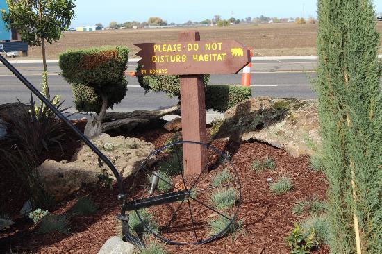 Baño Discapacitados Traduccion:Black Bear Diner Los Banos California