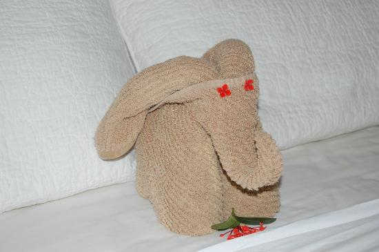 Mirador B&B: towel elephant