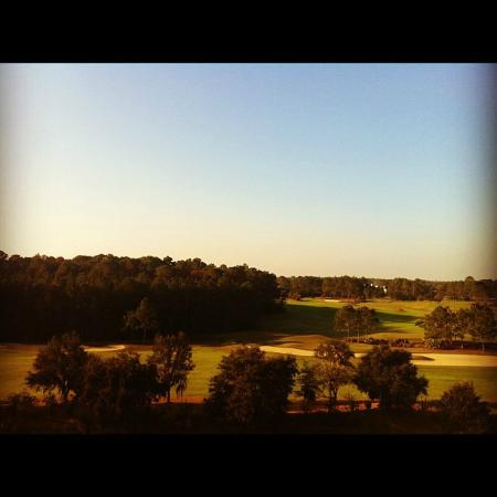 The Renaissance World Golf Village Resort: View from 6th floor balcony