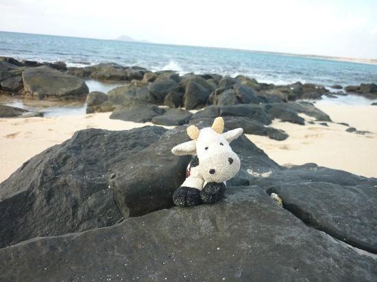 Melia Tortuga Beach Resort & Spa: Short walk along the beach to rocky area.