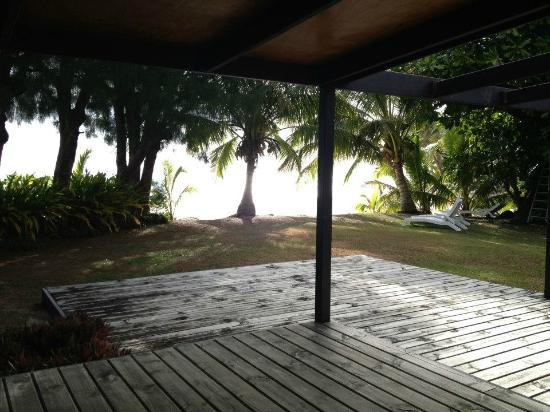 Palm Grove: View from the villa deck